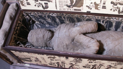 German Boy finds Mummy in Grandmother's Attic