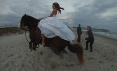 A wedding shoot ended in disaster after the horse bolted