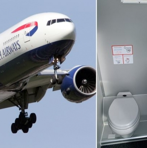 Flight diverted after someone left 'smelly poo' in toilet
