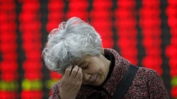 CCTV News: 21 securities brokerages vow to stabilize market