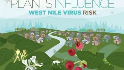 Nebraska officials report year's 1st West Nile virus case