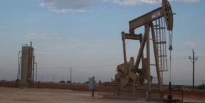 Global oil demand growth to slow: IAE