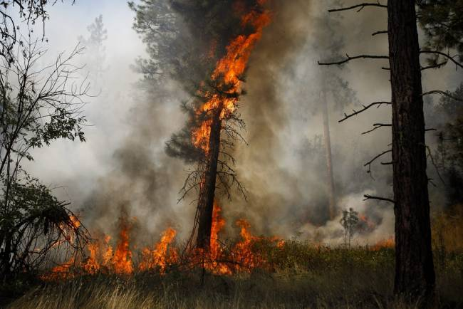 Australian firefighters 'happy to help' in Northwest