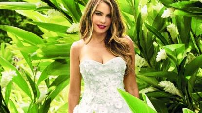 Sofia Vergara wants cake to be the focus of her wedding