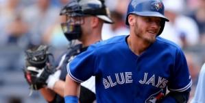 Fan throws back homer ball at Yankee Stadium, hits NY player