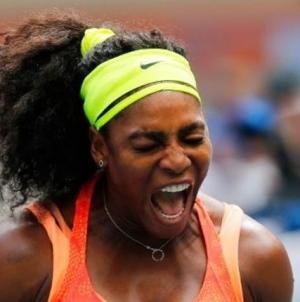 Serena Williams' grand slam hopes ended by Vinci