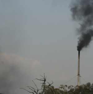 India's Climate Action Plan ambitious, progressive: Javadekar