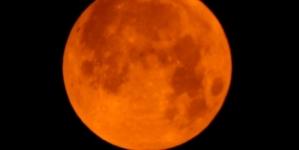 Super blood moon wows stargazers