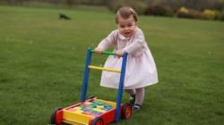 Kate's new photos of Princess Charlotte mark 1st birthday