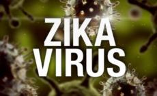 Positive case of Zika virus confirmed in Bulloch County